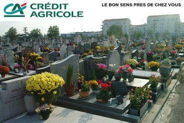 Le bon sens au cimetière